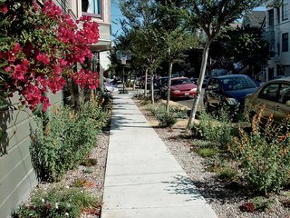 Where the Sidewalk Ends - Photo 1 of 4 -