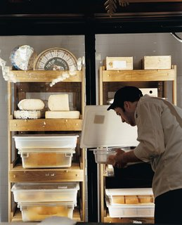Philadelphia, PA - Photo 10 of 12 - The cheese cave at Di Bruno Brothers delivers dairy delicacies.