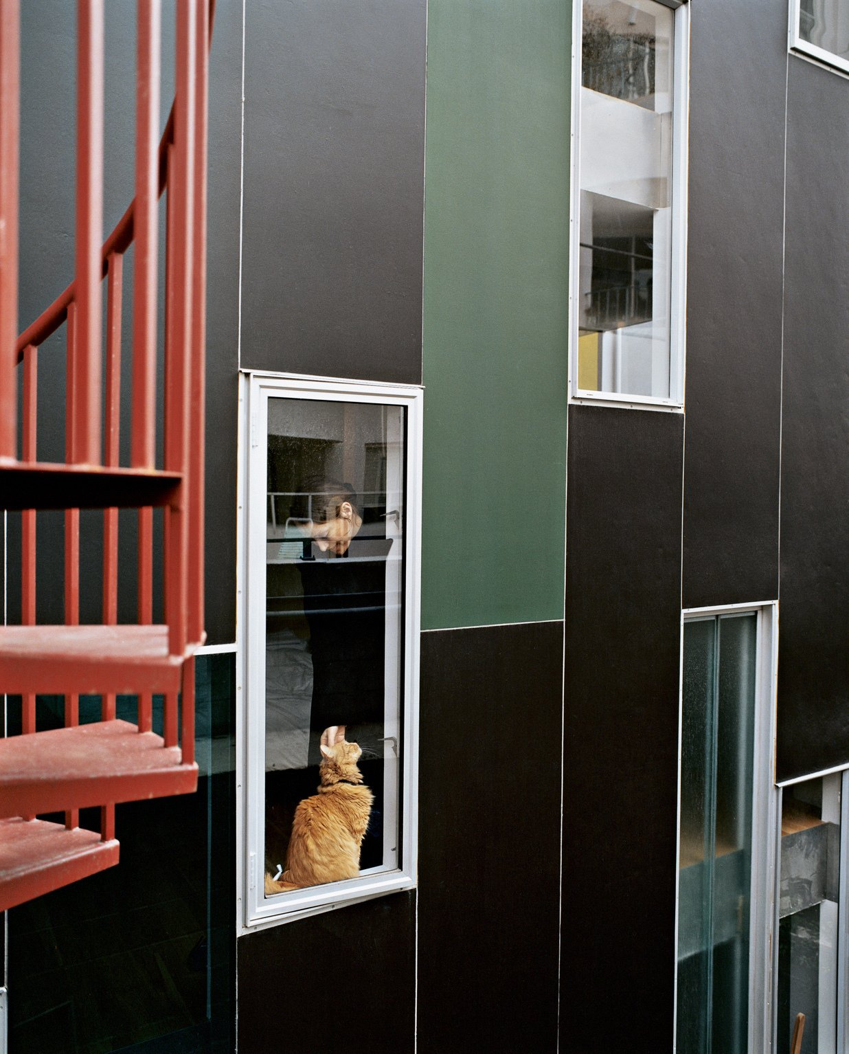 Rich, dark concrete panels and colorfully dispersed windows wrap the exterior in varying permutations.  Photo 10 of 21 in 21 Cats Living in the Modern World from Kaleidoscopic Cabinet