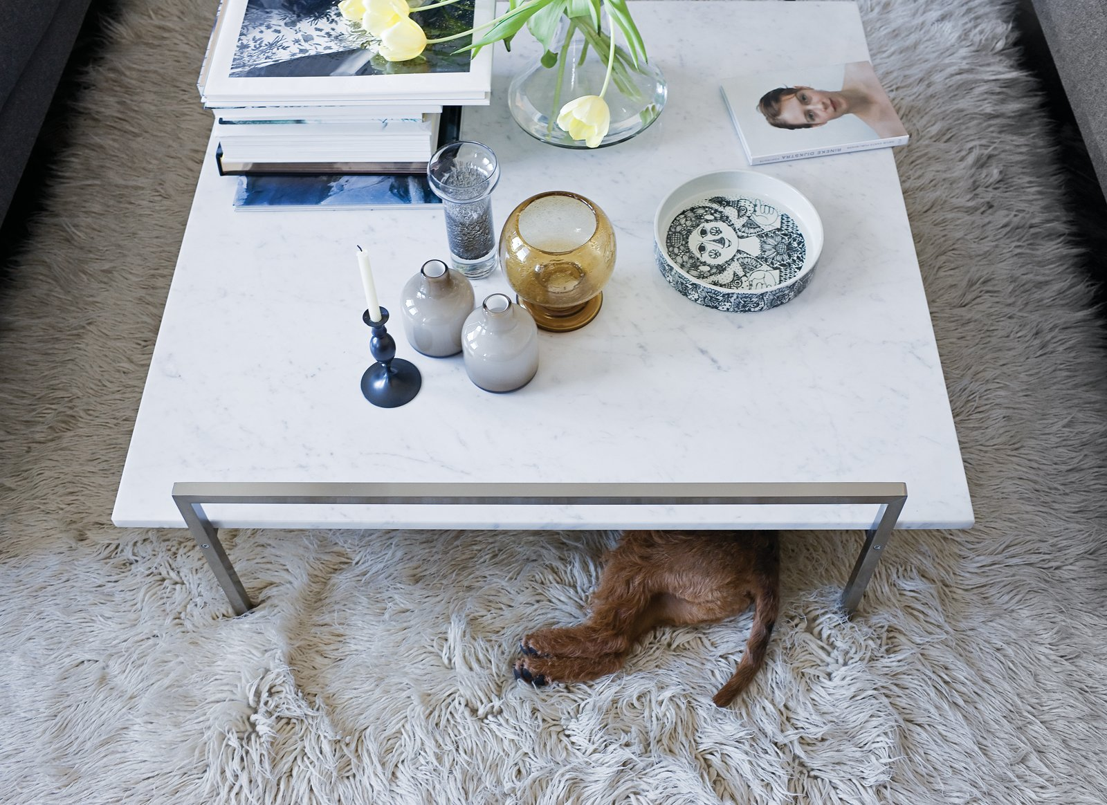 The Skinny coffee table (perfect for unauthorized doggy dining) by Prospero Rasulo for Zanotta is also a display board for Jeanette's growing collection of Stig Lindberg and Bjorn Wiinblad ceramics. Tagged: Living Room, Coffee Tables, and Rug Floor.  Photo 20 of 25 in 25 Dogs Living in the Modern World from Creative Renovation in Brooklyn