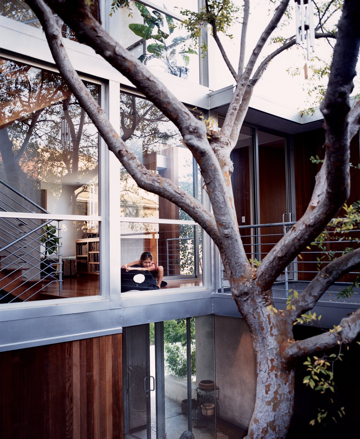 Kalia, just outside the playroom, overlooking the courtyard and the Chinese elm around which the entire interior was built. Two Houses Are Better Than One - Photo 12 of 13