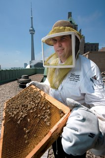 Hive Design - Photo 1 of 1 - Fairmont Royal York Hotel executive chef David Garcelon takes instruction from beekeepers on the handling of the three new hives on the hotel's roof, just beside the roof-top herb garden. Photograph by Norm Betts.