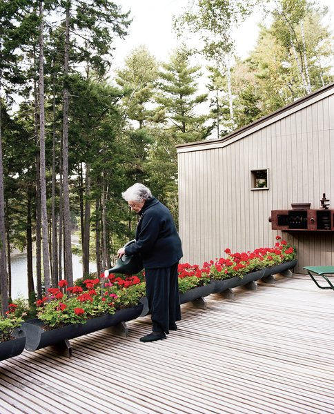 Sally waters the row of geraniums, keeping the bright red security barrier marking the edge of the deck in full bloom.