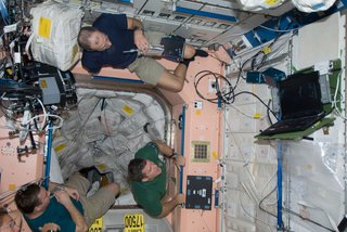 Space Living: Astro Home - Photo 27 of 32 - Members of the Space Shuttle Endeavour and ISS crews spend some rare leisure time together on the orbital outpost as they move within a day and half of undocking and going separate ways. Astronaut Sandra Magnus, flight engineer for Expedition 18, is partially visible at lower left corner. Others sharing a few moments in the Unity node, from the left, are cosmonaut Yury Lonchakov, Expedition 18 flight engineer, and astronauts Steve Bowen and Donald Pettit, both STS-126 mission specialists. Photo taken November 26, 2008. Image courtesy of NASA.