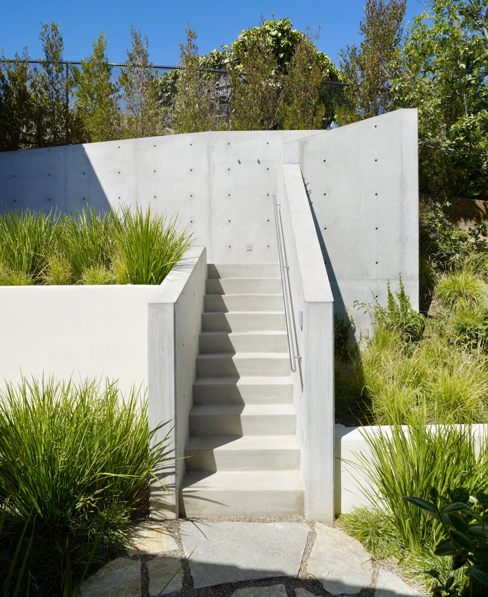 The entry and stairs to the treehouse complex was sculpted from exposed, unpainted concrete, designed to suggest the ladder of a traditional treehouse.  Photo 5 of 11 in An Atypical Tree House