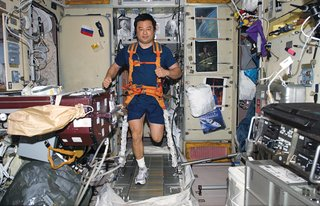 "Space Living: Astro Home - Photo 12 of 32 - Space life doesn't differ much from the daily grind on Earth—–it just demands more attention. Leroy Chiao's daily workout requires tying on both sneakers and <br><br>a bungee harness before putting in miles on the TVIS (""treadmill vibration isolation system""). Image courtesy of NASA."