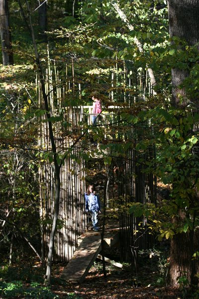 Although the tree house blends into the wooded area on the Stubbs' property, it's less than 100 feet from the house and Laurie can watch the girls (in this image, Emily is on the top platform and Abigail is in the lower-level entry) at play from her home office.Photograph courtesy of Laurie Stubb.