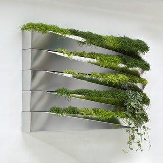 Grass Mirror - Photo 5 of 5 -