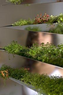 Grass Mirror - Photo 2 of 5 -