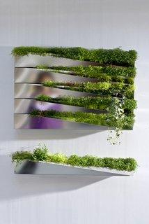 Grass Mirror - Photo 4 of 5 -