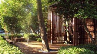Miami: Simpson Park Hammock - Photo 4 of 4 -