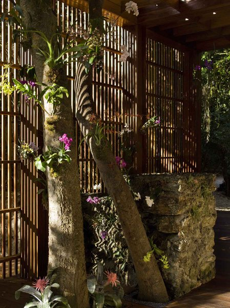 The entry portal Oppenheim designed doubles as a kind of small orchid park.