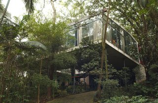 Lina Bo Bardi - Photo 6 of 14 - The Glass House as it appears today, with the forest grown around it, as Bo Bardi had anticipated—she insisted that the displaced vegetation be replanted just after the house was finished. Photo courtesy Espasso.