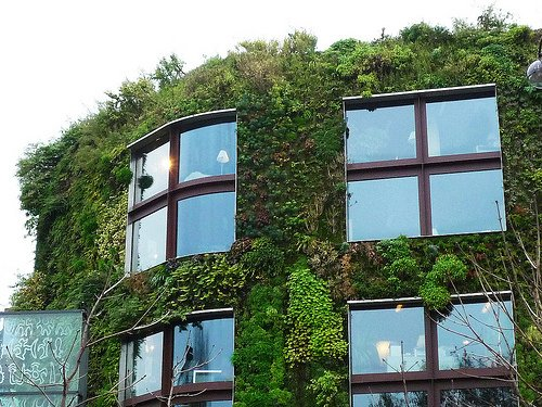 The vertical garden at  the Musée du Quai Branly in Paris, France, designed by Patrick Blanc.