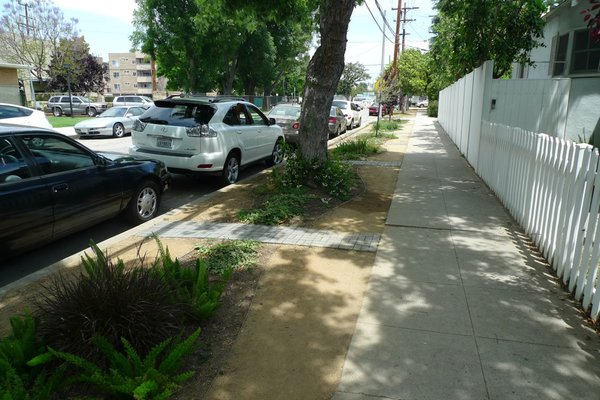 Begley tore out the grass between the sidewalk and the street and planted a drought-tolerant garden.