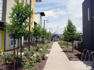 Tassafaronga Village is anchored by a large public plaza and many of the townhouses open to pocket parks and semi-private spaces that help facilitate community gatherings. At the end of this pedestrian path is a jungle gym for children in the neighborhood.
