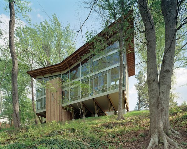 The house is perched on nine broad wood trusses to avoid cutting a single tree. The trusses also permit air and water to flow under the house, preserving the hydrology. The butterfly-shaped roof opens views to the creek and funnels rainwater into a collection system.