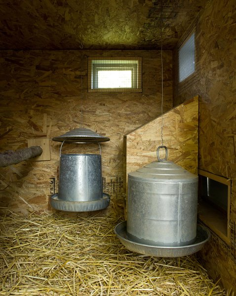 """Inside, the coop is lined with oriented strand board (OSB) and fitted with cans of food and water. Though Snyder designed a large door so he and Martin can access the inside of the coop to clean it, he forgot that to get to the door, they'd have to crawl through the chickens' run. """"That's the one think I would have changed,"""" he says. """"We're both pretty short but we still have to crouch down to get through."""""""