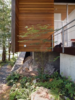 When Living on the Edge is Super Comfortable - Photo 8 of 8 - The cantilevered main floor creates space for bracken fern and other indigenous vegetation to flourish.