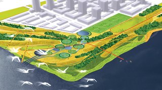 Landscape Architect Marcel Wilson - Photo 4 of 6 - According to Wilson, the Hunters Point project represents an opportunity to protect and enhance the City's biological diversity.