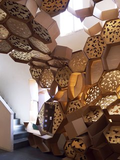 Arch Students Build a Hive - Photo 14 of 19 -