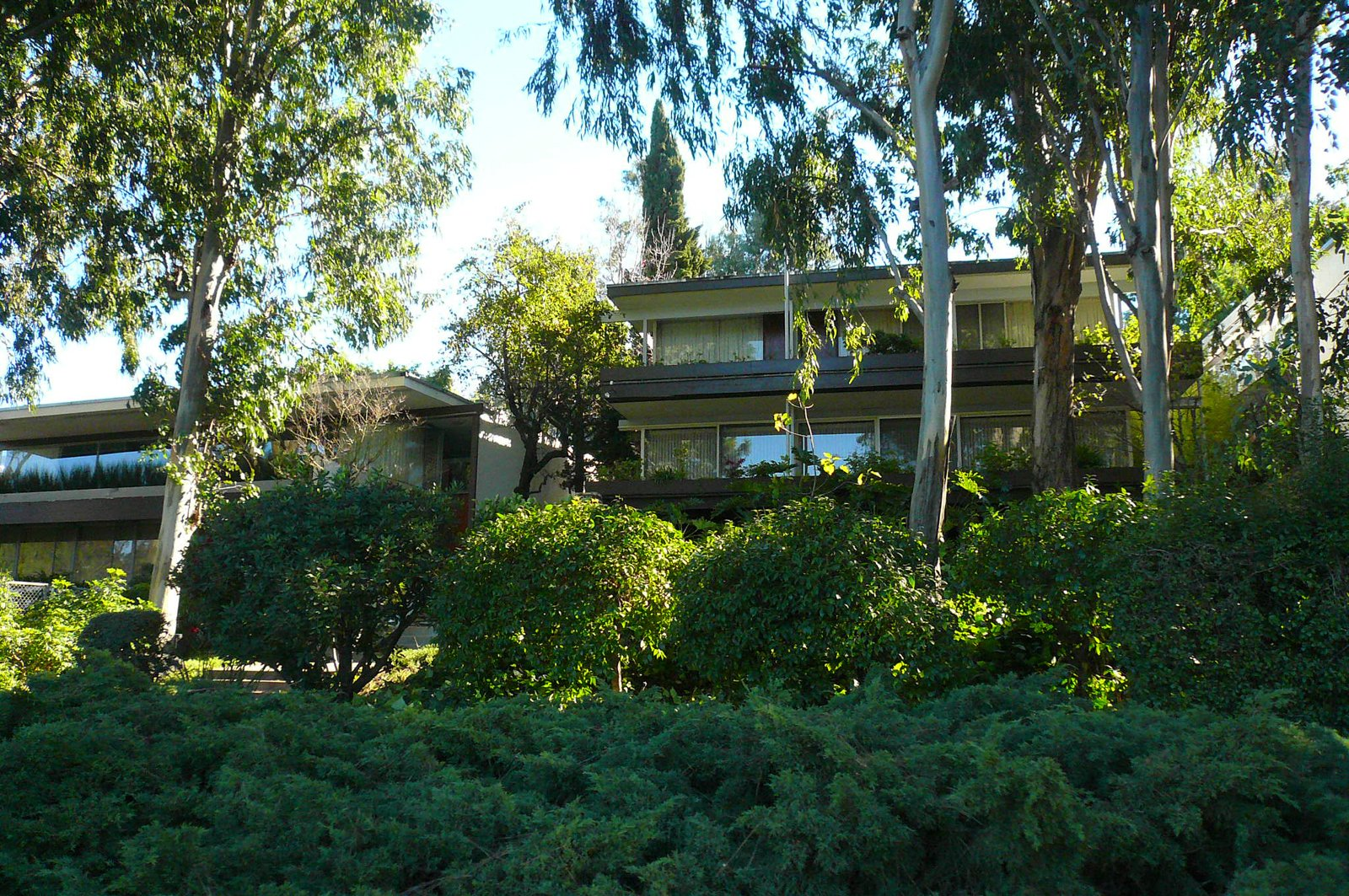 Next up: a cruise down Silverlake Boulevard, where Bestor pointed out, behind a screen of trees, a pair of houses Richard Neutra developed speculatively in the early 1960s.  An Architect's Guide to Silver Lake by Jaime Gillin