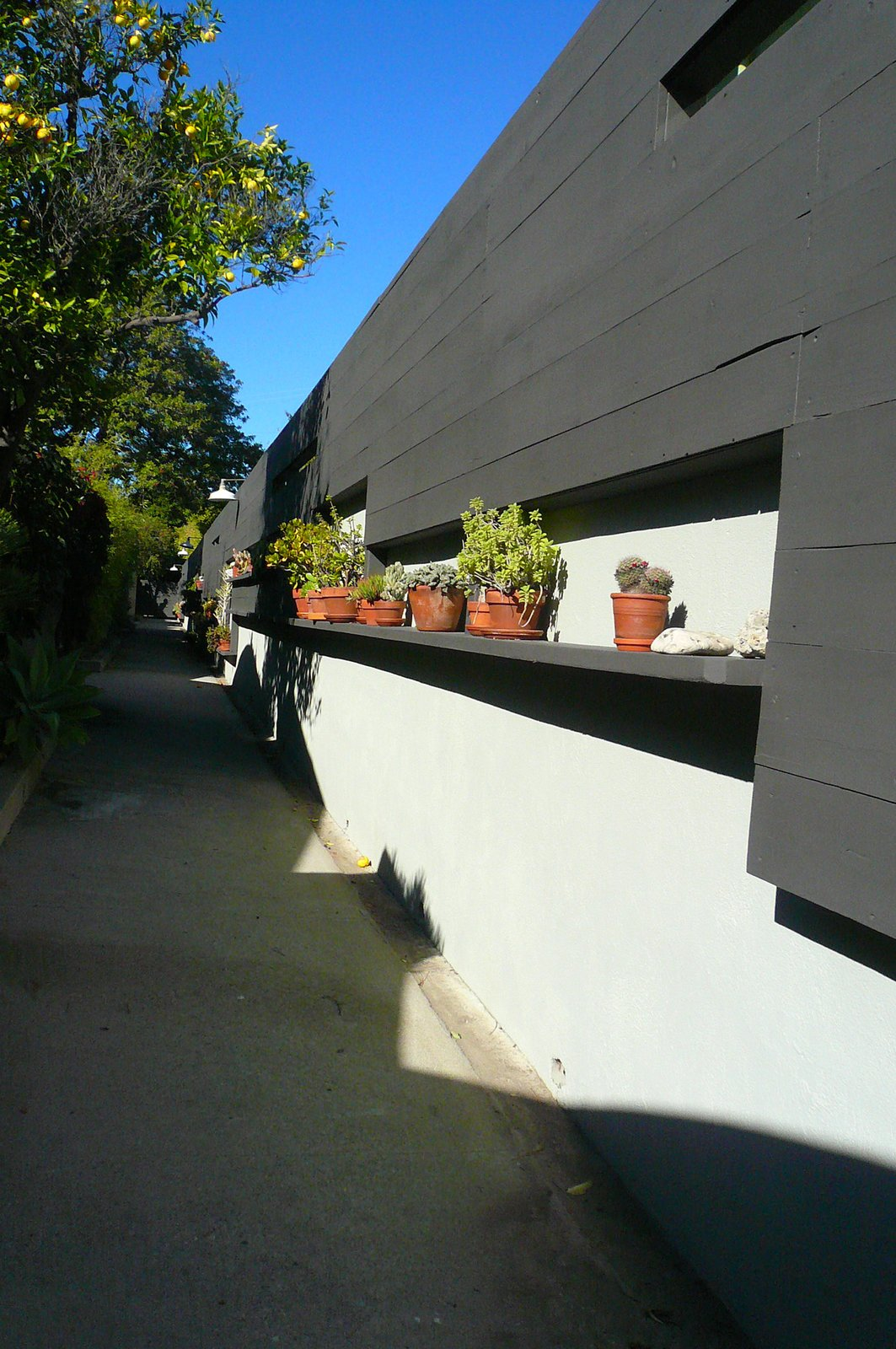 The front gate was closed but we entered anyway. Bestor is a big fan of the plant wall along the main walkway, which ties the various front entrances together and lends some visual detail to an otherwise simple form.  An Architect's Guide to Silver Lake by Jaime Gillin