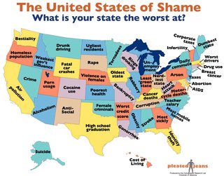 Friday Finds 1.28.11 - Photo 3 of 5 - The United States of Shame.