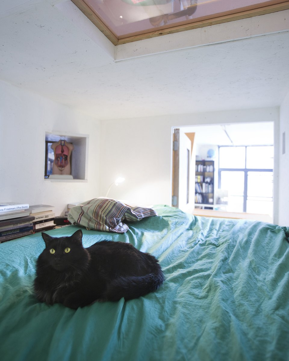 Count Dracula, one of two loft cats, curls up on Ionescu's bed. An operable window swings open to allow ventilation, natural light, and a view of library.  Photo 8 of 13 in Communal Living on a Budget in Brooklyn