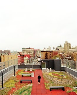 Five Boroughs in 48 Hours - Photo 23 of 32 - The Brook, a supportive housing building in the Bronx, occupies what had, for years, been a vacant lot. The green roof, pictured here, is one of a number of LEED-driven elements.