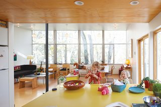 A New Slant - Photo 10 of 21 - Hale's material preferences helped keep costs low: Inexpensive plywood lines the ceiling and cork covers the floors. He covered the kitchen island with yellow plastic laminate.