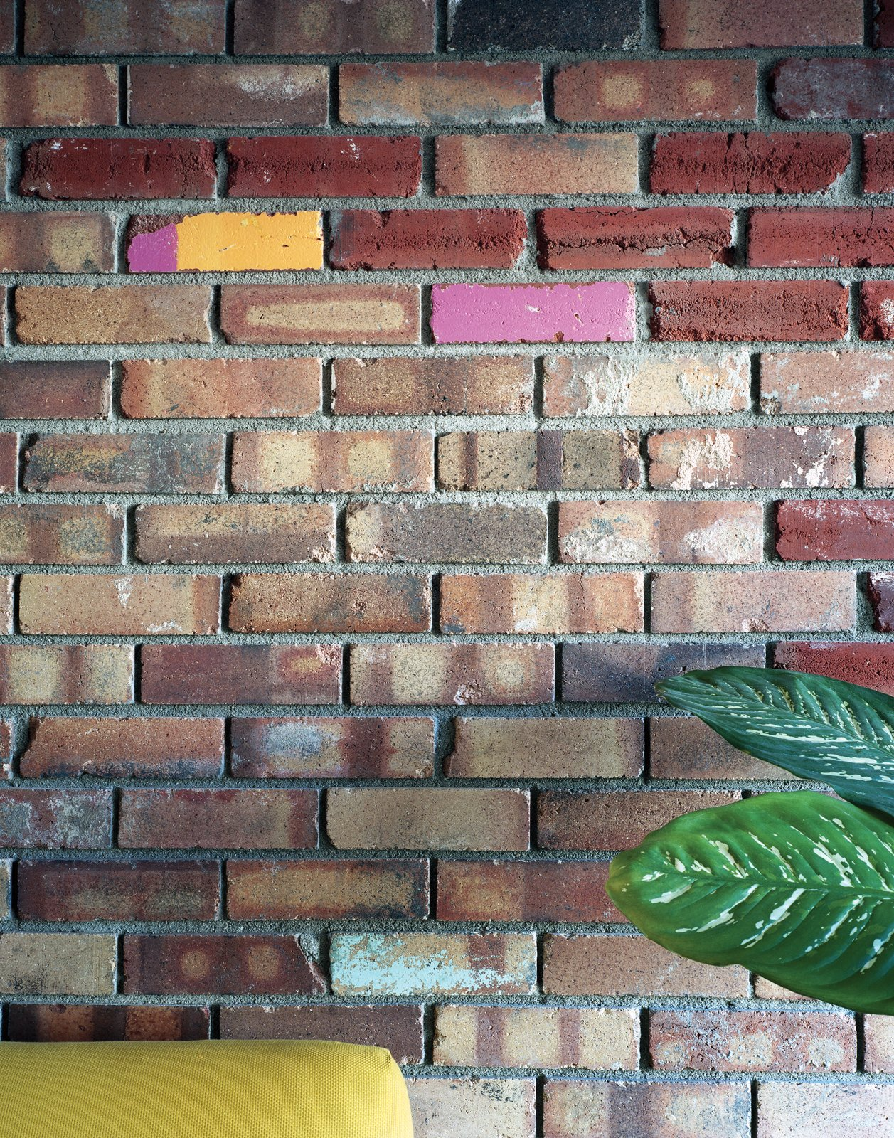 The house that came with the lot had suffered years of neglect, but its old bricks were readily salvageable. Moore combined these with others taken from local demolition yards, piecing together beautiful, two-tone walls flecked with brightly painted pink, orange, lime green, and white bricks salvaged from a Denver elementary school.  Colorful Intentions by Meg Dwyer from Denver's Energy Efficient  Home