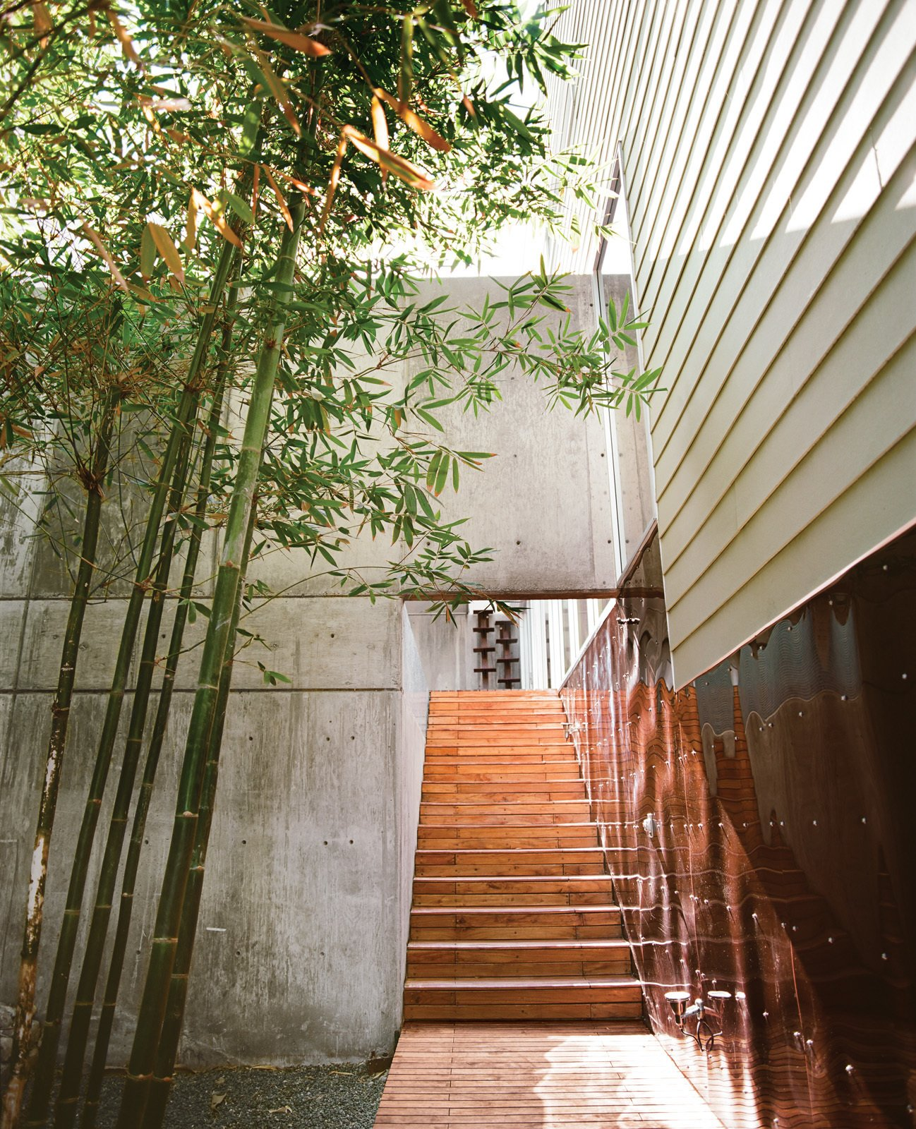 The bamboo garden, home to Oscar the tortoise, abuts the walkway leading to the central courtyard. Tagged: Staircase and Wood Tread.  Photo 2 of 13 in Modern in Tijuana
