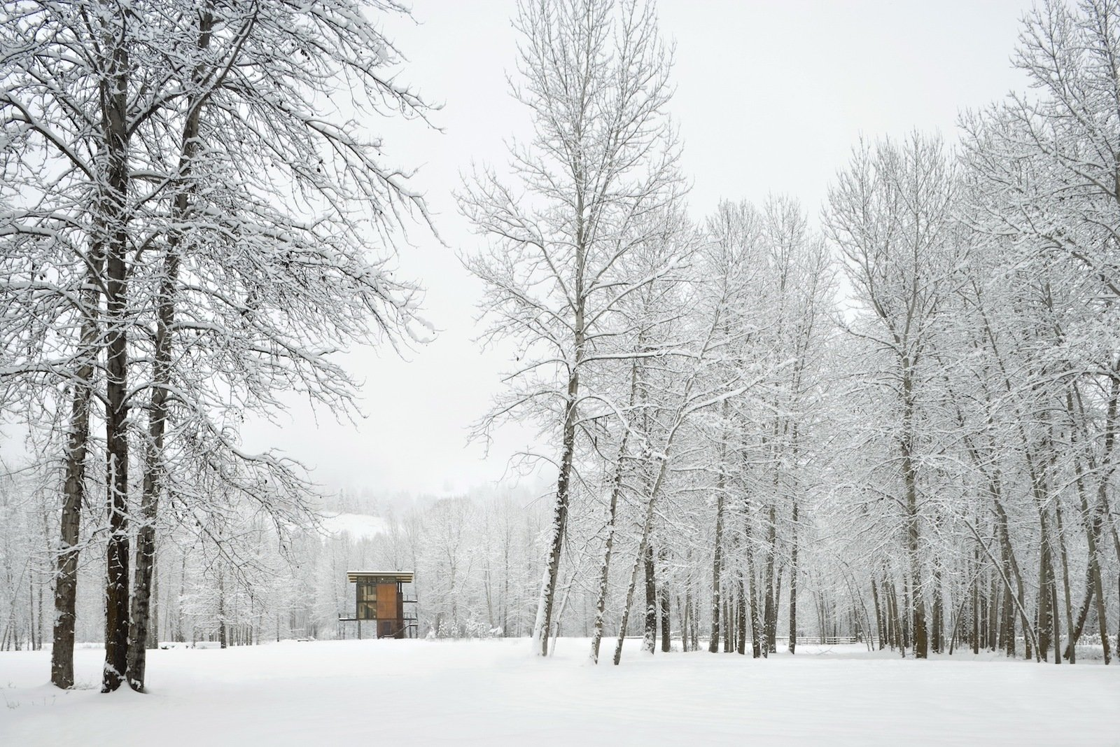 Delta Shelter in the snow. Photo by Benjamin Benschneider.  Modern Winter Retreats by Aileen Kwun from Building the Maxon House: Week 5