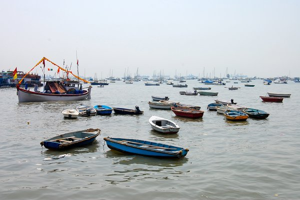 In Mumbai's harbor, boats speckle the water. They looked to be so close to one another that I imagined being able to jump from one to the next like lilly pads.