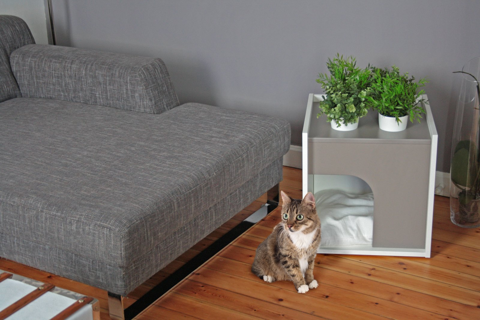 POUSSE CREATIVE'S PET HOUSES  Designers Sebastian Haquet and Thomas Lanthier have a decidedly modern take on shelters for pets. Their Lille-based company, Pousse Creative, was founded in 2010 with a chicken run designed for suburban environments and quickly grew to encompass a complete line of modern dwellings for rabbits, cats, dogs, and birds. 45 Pets in Beautiful Modern Homes - Photo 14 of 45