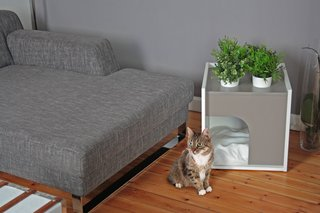 45 Pets in Beautiful Modern Homes - Photo 14 of 45 - Designers Sebastian Haquet and Thomas Lanthier have a decidedly modern take on shelters for pets. Their Lille-based company, Pousse Creative, was founded in 2010 with a chicken run designed for suburban environments and quickly grew to encompass a complete line of modern dwellings for rabbits, cats, dogs, and birds.