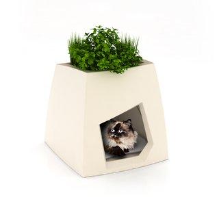 Pousse Creative's Pet Houses - Photo 5 of 5 -