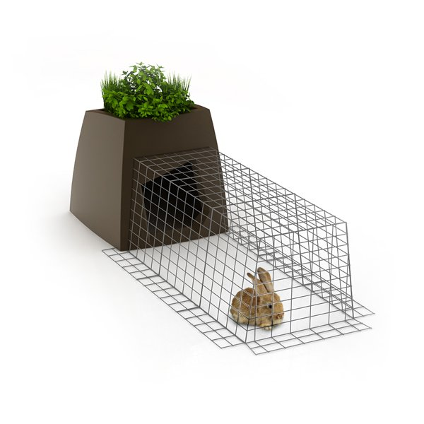 The enclosed run allows your pet to roam safely and securely.