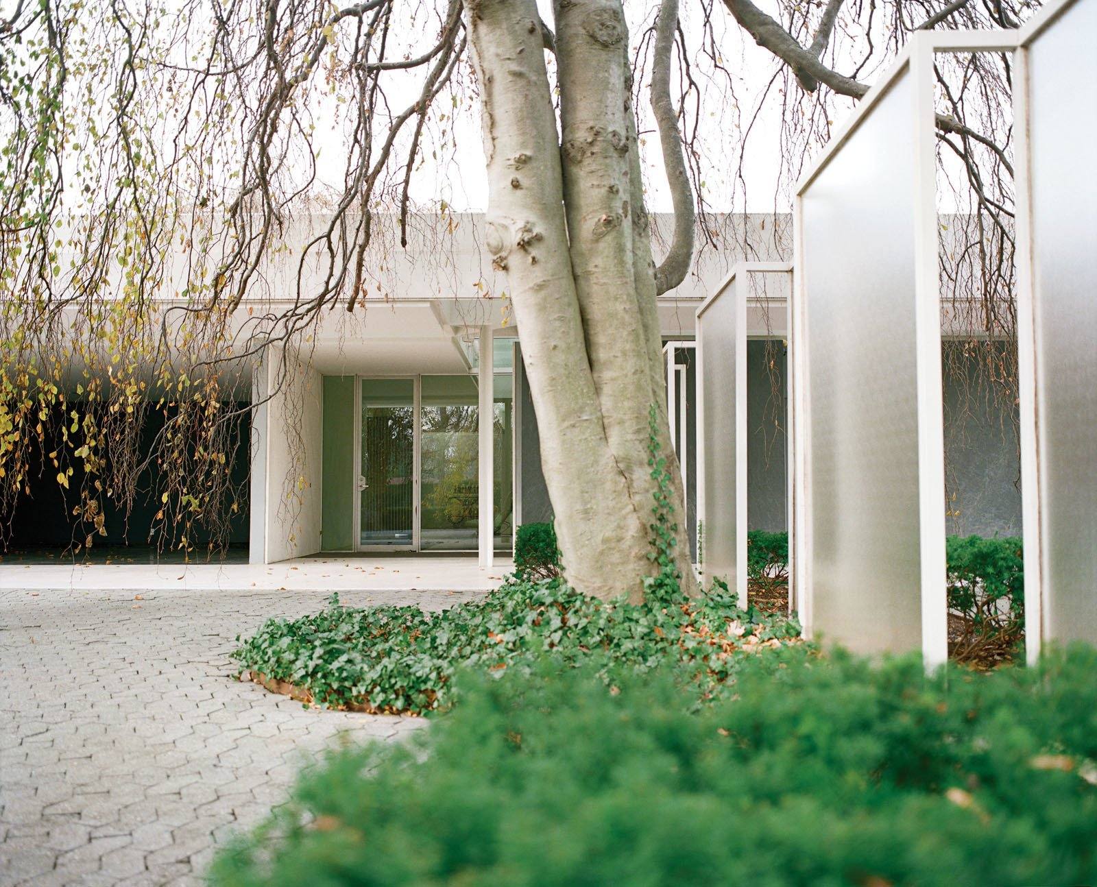The front entrance of the Miller House is flanked by a series of glass screens, designed by either Dan Kiley or Girard.