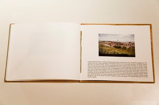 This page describes the University Mound Nursery, a block of abandoned greenhouses. Roses still bloom there.