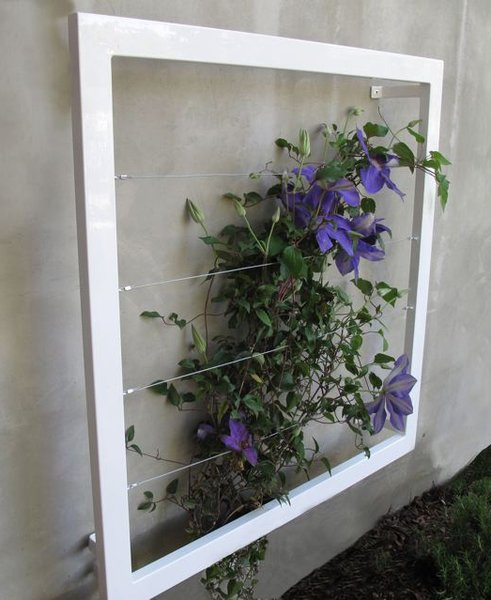 The Ina Wall Trellis comes in a junior size (measuring three-feet wide, three-feet high, and five-inches deep) and a senior size (measuring five-feet-nine-inches tall, 23-inches wide, and five-inches deep).
