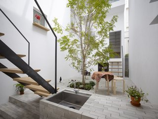 "10 Thoughtful Ways to Incorporate Trees Into Homes - Photo 5 of 10 - ""We tried to achieve a space in which inside and outside co-exist together,"" architect Akira Mada says. ""As we walk around the house, at times we feel the space is totally outside while at other moments it is an interior. It's this co-existence that gives the residence its unique atmosphere."""
