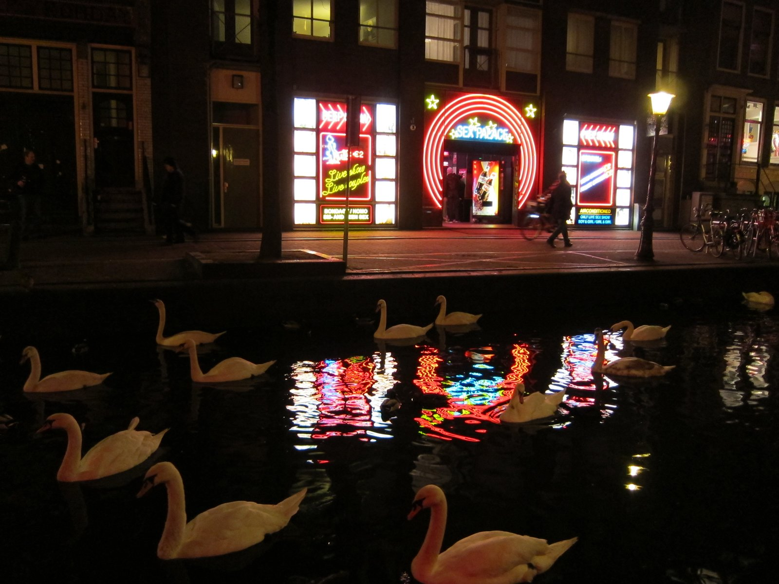 """And here's one of my favorite photos from my trip: a swan-filled canal in the red light district, illuminated by the glow of crude neon lights emanating from a place called """"Sex Palace."""" So bizarre! So Amsterdam!  Don't miss a word of Dwell! Download our  FREE app from iTunes, friend us on Facebook, or follow us on Twitter!  The Dylan, Amsterdam by Jaime Gillin"""