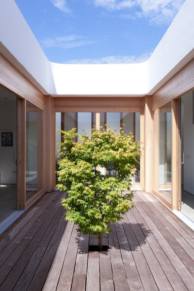 The Japanese maple gives the courtyard its peaceful character.