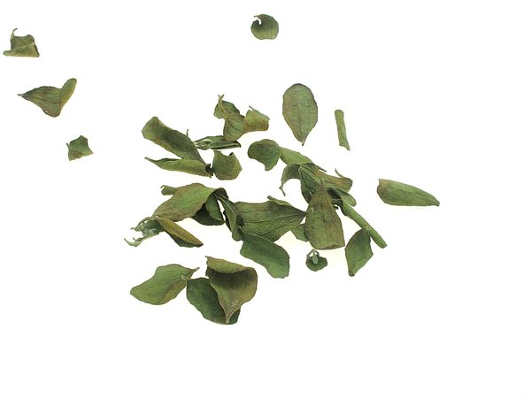 And a pile of mistletoe leaves.
