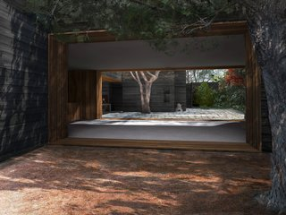Dwell Home Venice: Part 3 - Photo 8 of 14 - A view from the pine needle courtyard across the living and dining room to the main courtyard. The cropped tree on the right side of the image is the existing mature pine tree which was retained as a key design element.