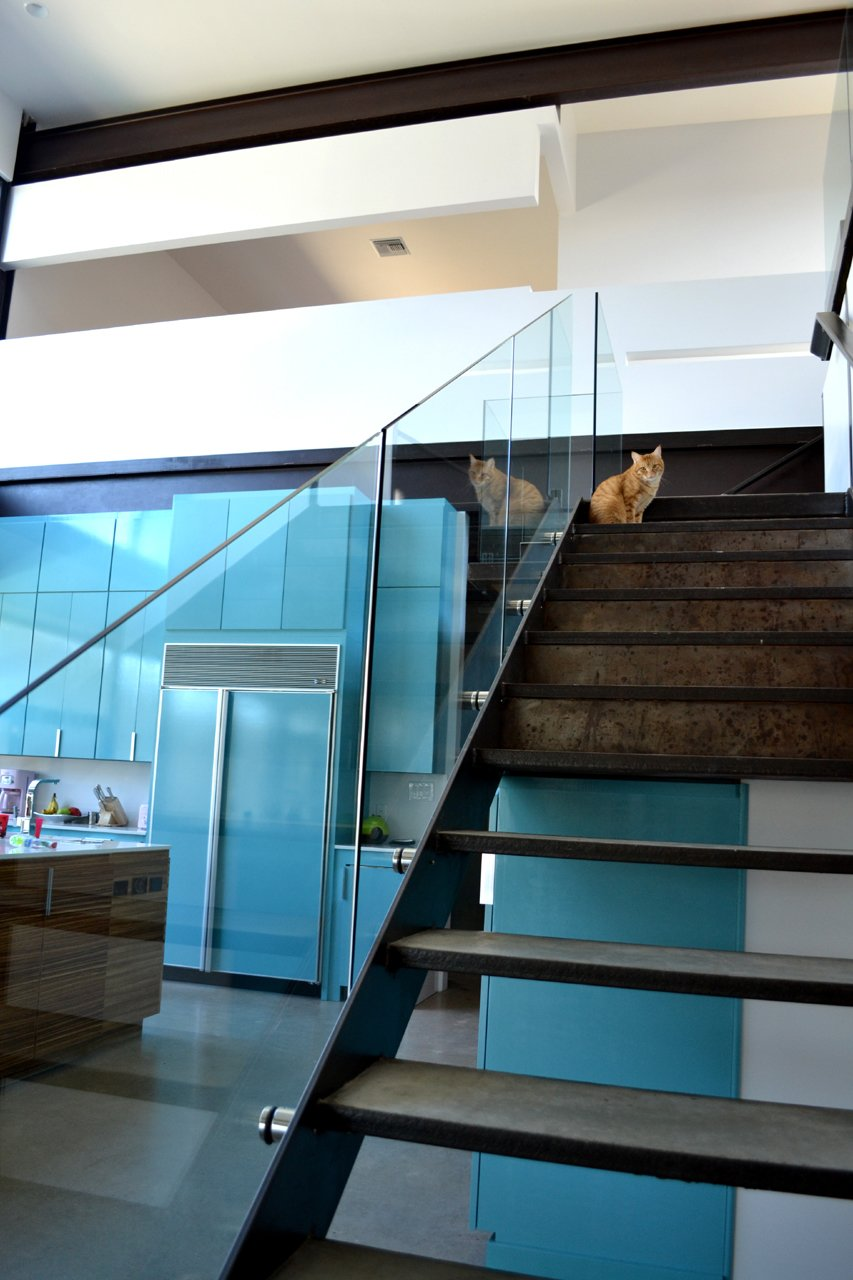 The steel-framed stair with concrete treads and glass guardrail makes a nice perch for the family cat to take in views of the lake and check out what's cooking in the kitchen. Photo by J.C. Schmeil. Tagged: Staircase and Metal Tread.  Photo 3 of 21 in 21 Cats Living in the Modern World from Lakeside House in Texas