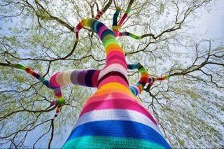 Friday Finds 01.20.12 - Photo 6 of 9 - Here's one of Agata Olek's random acts of yarn.