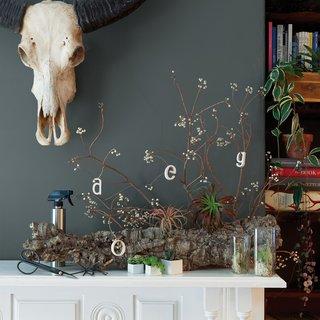 5 Stylish Home Gardening Tools - Photo 1 of 1 -